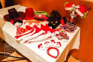 Fotobox Requisiten und Utensilien bei einer Weihnachtsfeier in Neckenmarkt